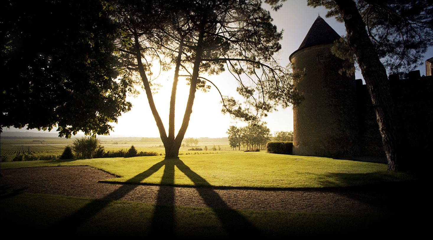 Immagine Chateau d'Yquem