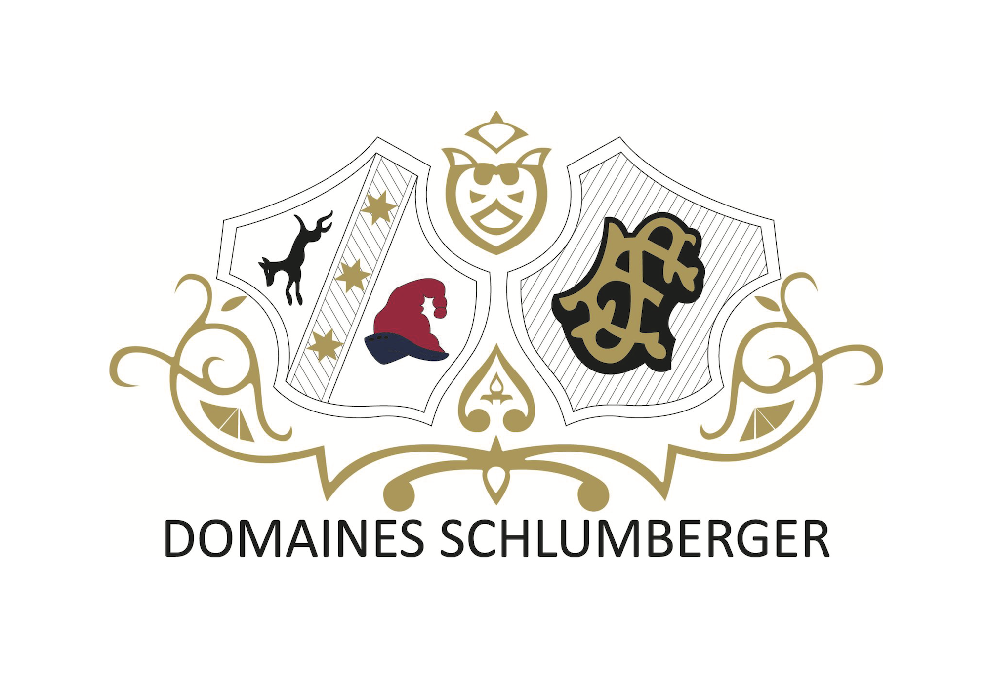 Domaines Schlumberger